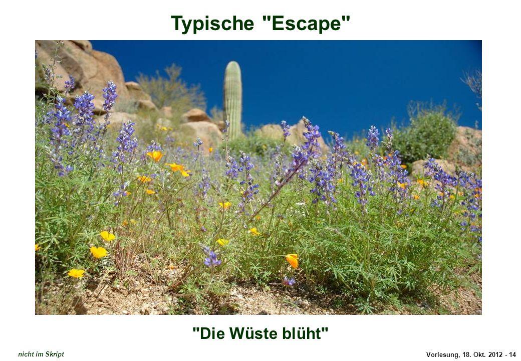 Typische Escape: Die Wüste blüht