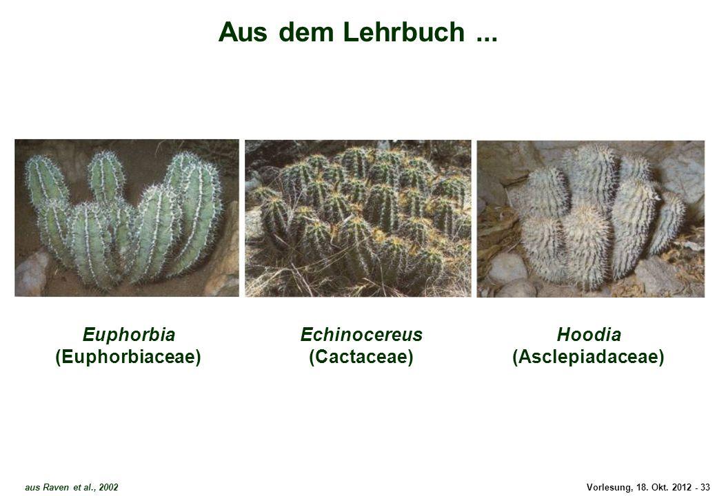 Aus dem Lehrbuch ... Euphorbia (Euphorbiaceae)