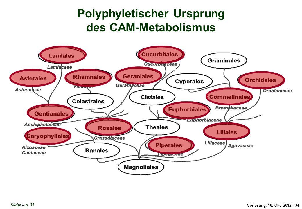 Polyphyletischer Ursprung CAM