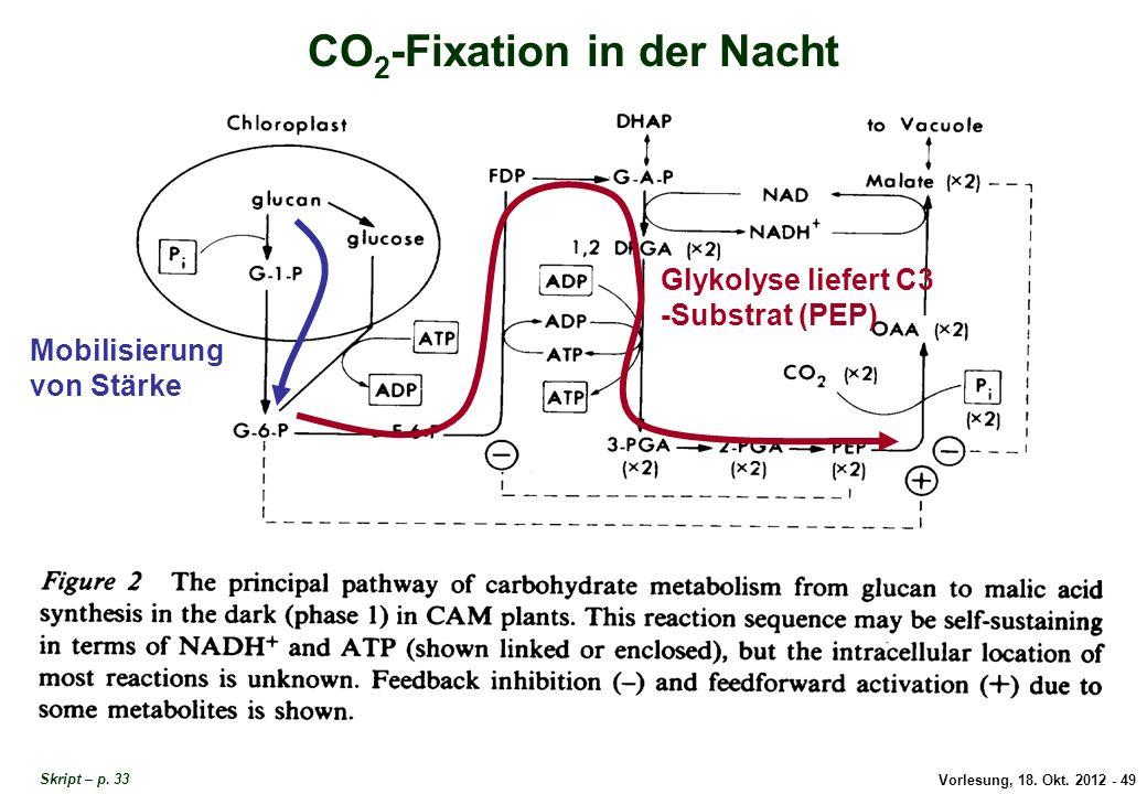 CO2-Fixation in der Nacht