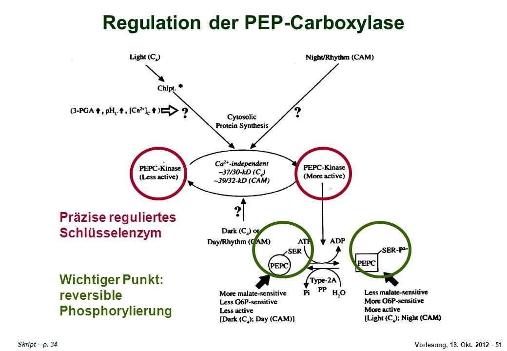 Regulation der PEP-Carboxylase