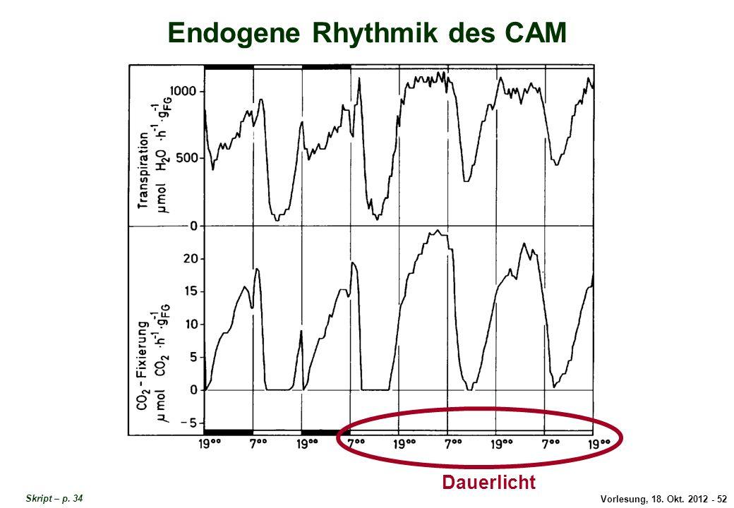 Endogene Rhythmik des CAM