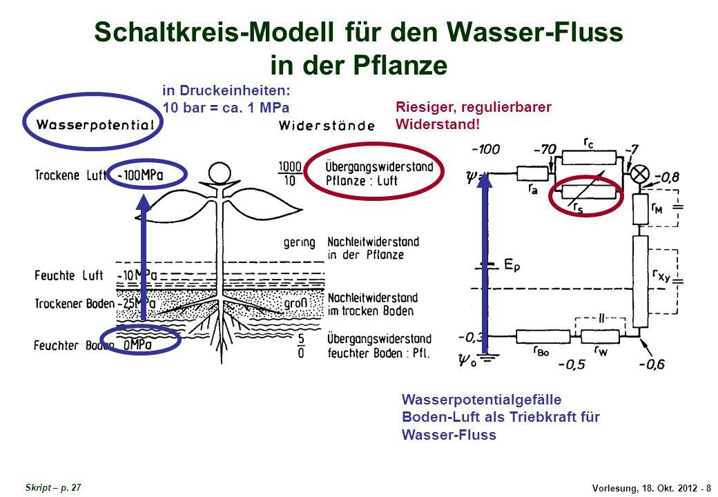 Schaltkreis-Modell für den Wasser-Fluss in der Pflanze