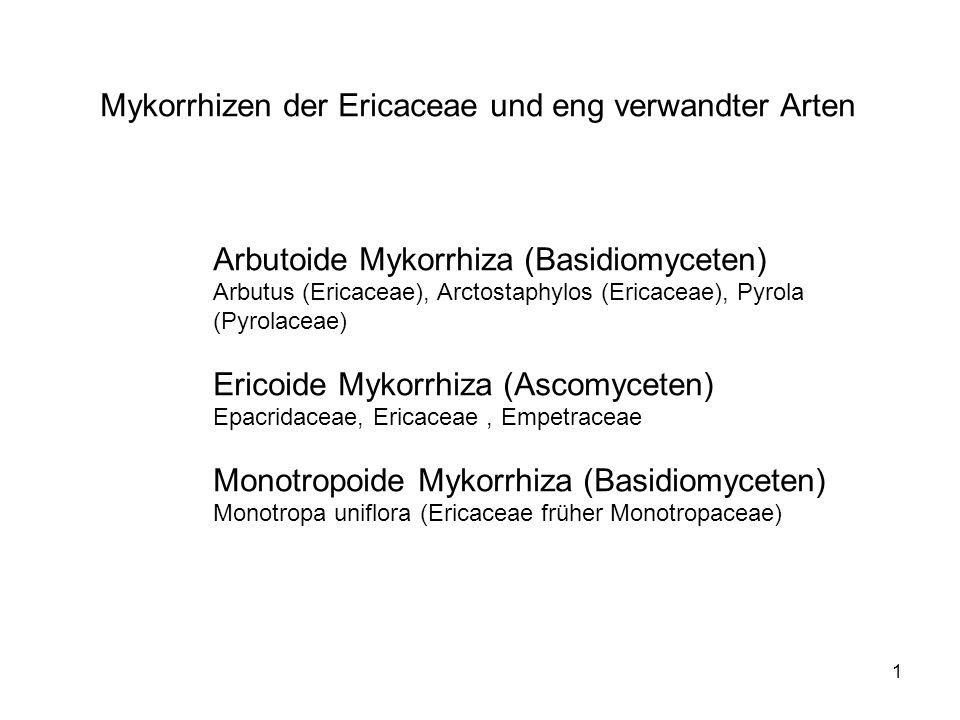 Mykorrhizen der Ericaceae und eng verwandter Arten