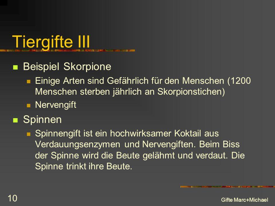 Tiergifte III Beispiel Skorpione Spinnen