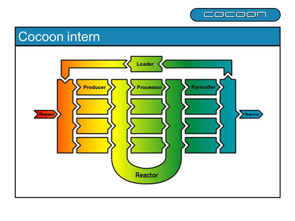 Cocoon intern