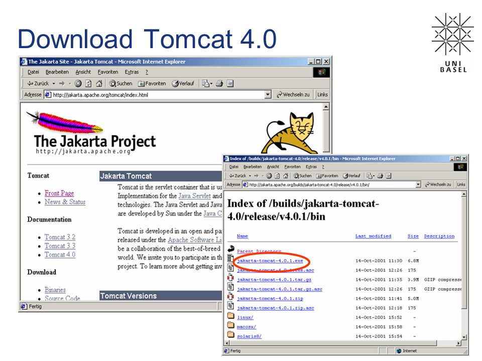 Download Tomcat 4.0