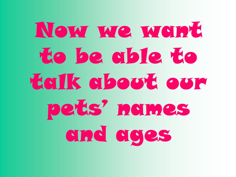 Now we want to be able to talk about our pets' names and ages