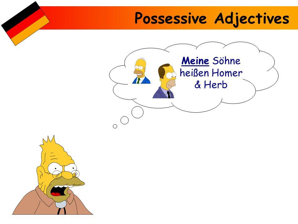 Meine Söhne heißen Homer & Herb