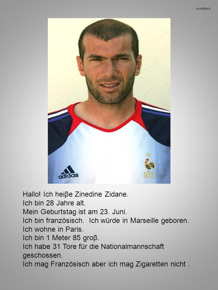 Hallo! Ich heiβe Zinedine Zidane. Ich bin 28 Jahre alt.