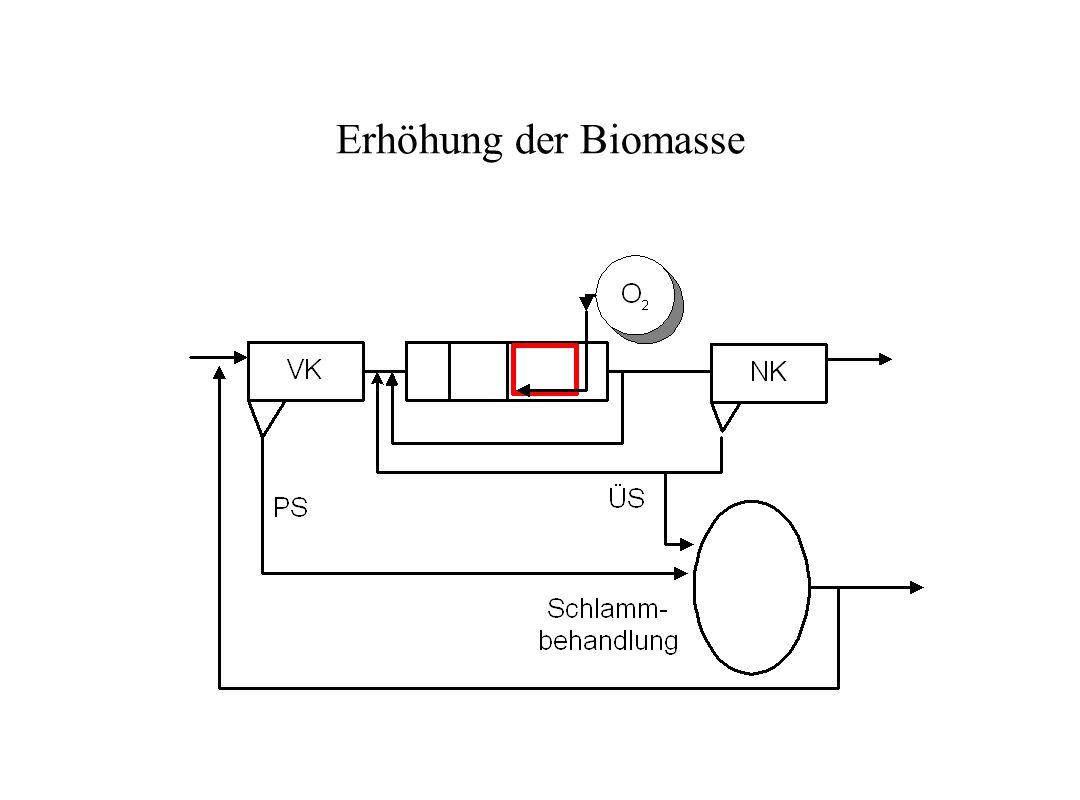 Erhöhung der Biomasse