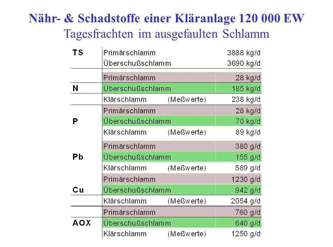 Nähr- & Schadstoffe einer Kläranlage 120 000 EW
