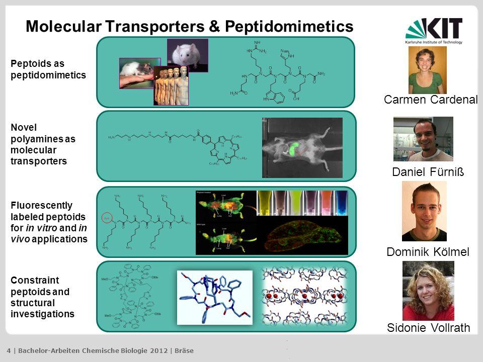 Molecular Transporters & Peptidomimetics