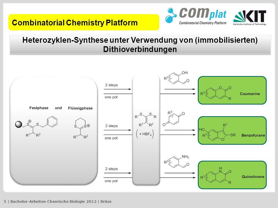 Combinatorial Chemistry Platform
