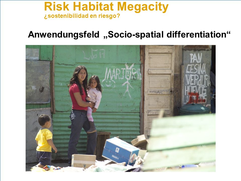 "Anwendungsfeld ""Socio-spatial differentiation"