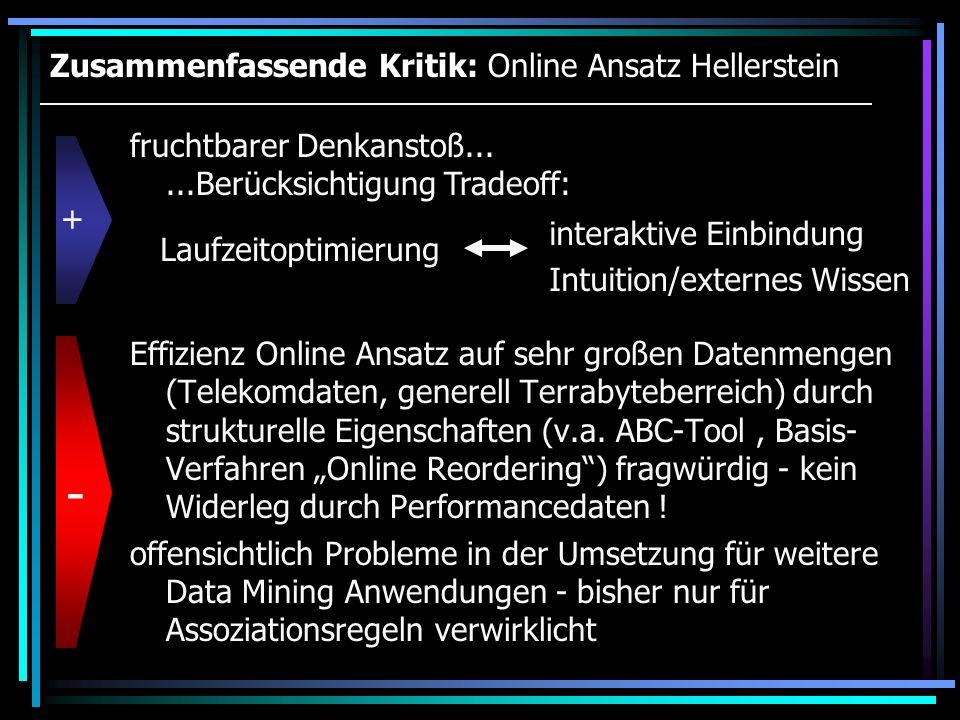 Zusammenfassende Kritik: Online Ansatz Hellerstein