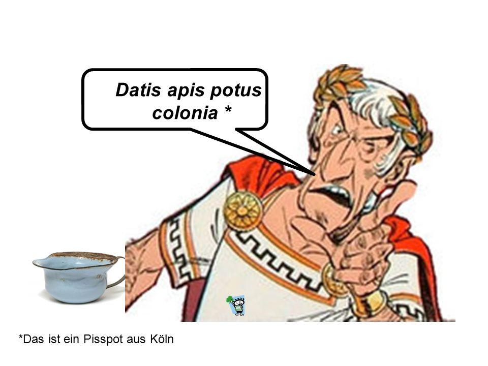 Datis apis potus colonia *