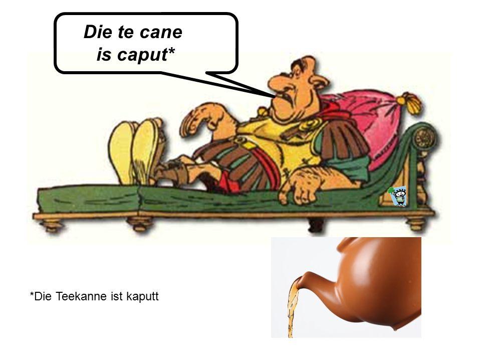 Die te cane is caput* *Die Teekanne ist kaputt