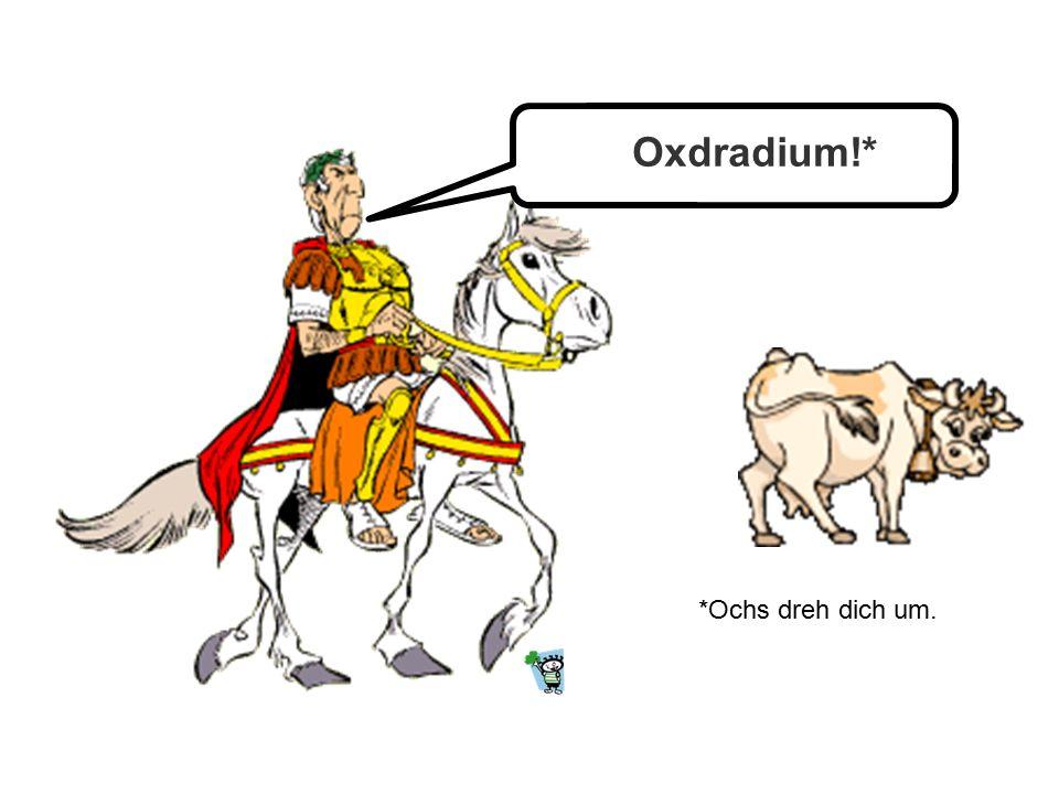 Oxdradium!* *Ochs dreh dich um.