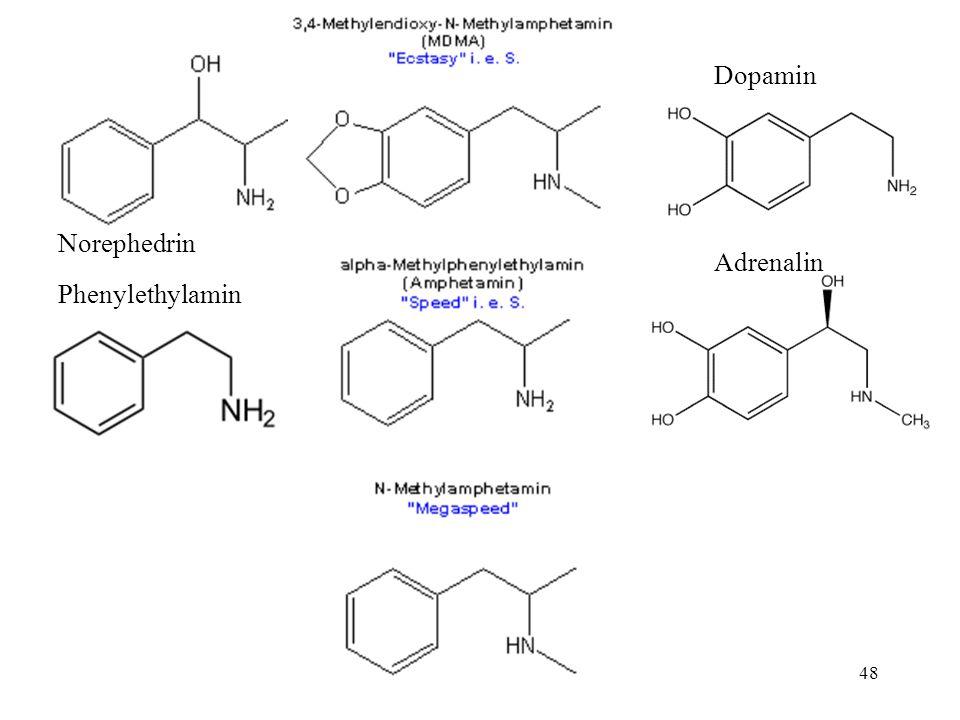 Dopamin Norephedrin Adrenalin Phenylethylamin