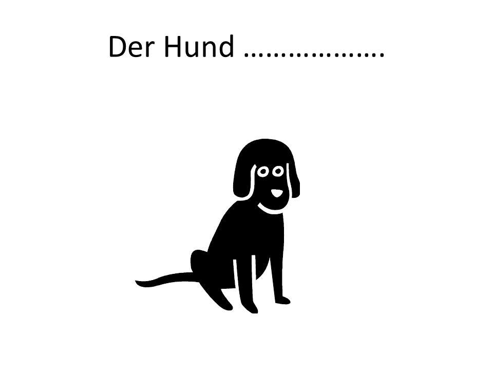 Der Hund ……………….