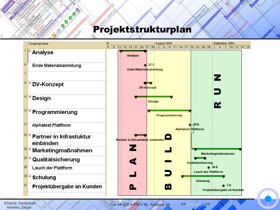 Projektstrukturplan en detail