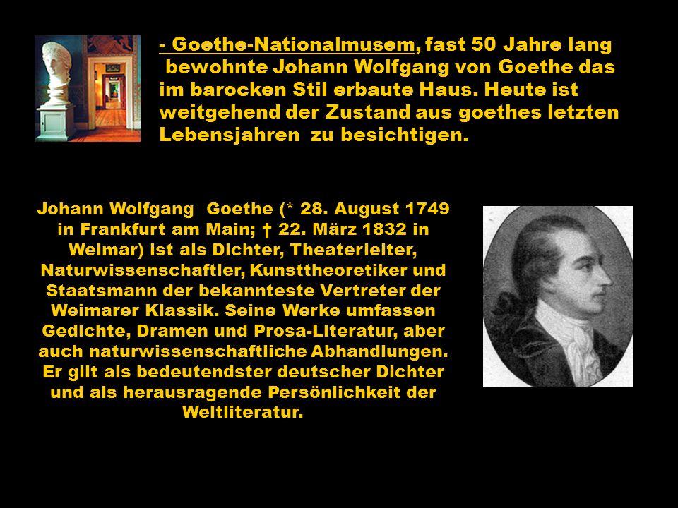 - Goethe-Nationalmusem, fast 50 Jahre lang
