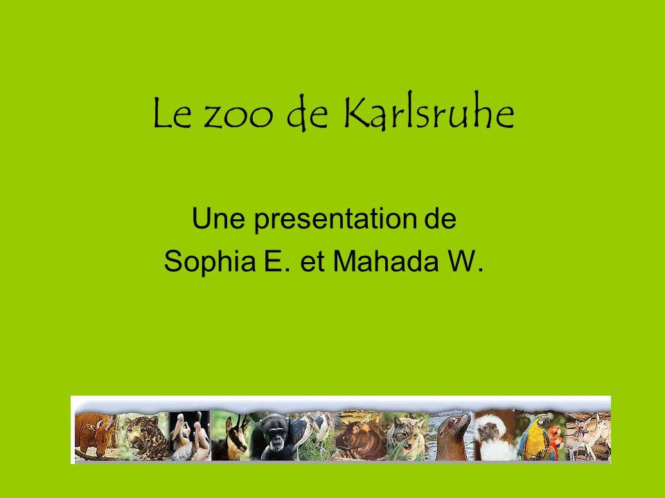 Une presentation de Sophia E. et Mahada W.