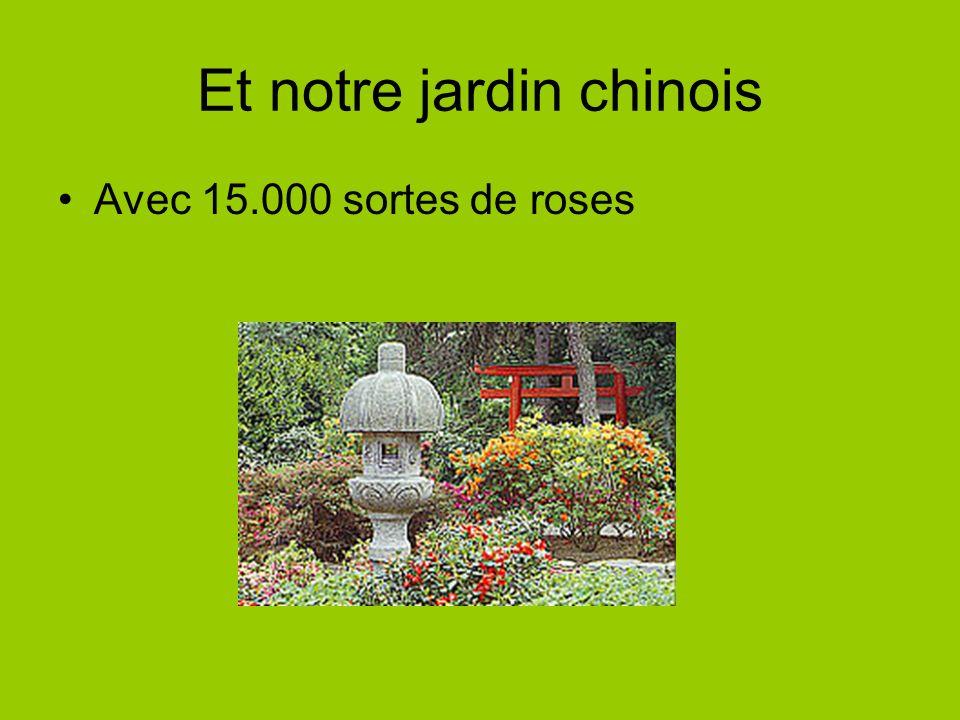 Et notre jardin chinois