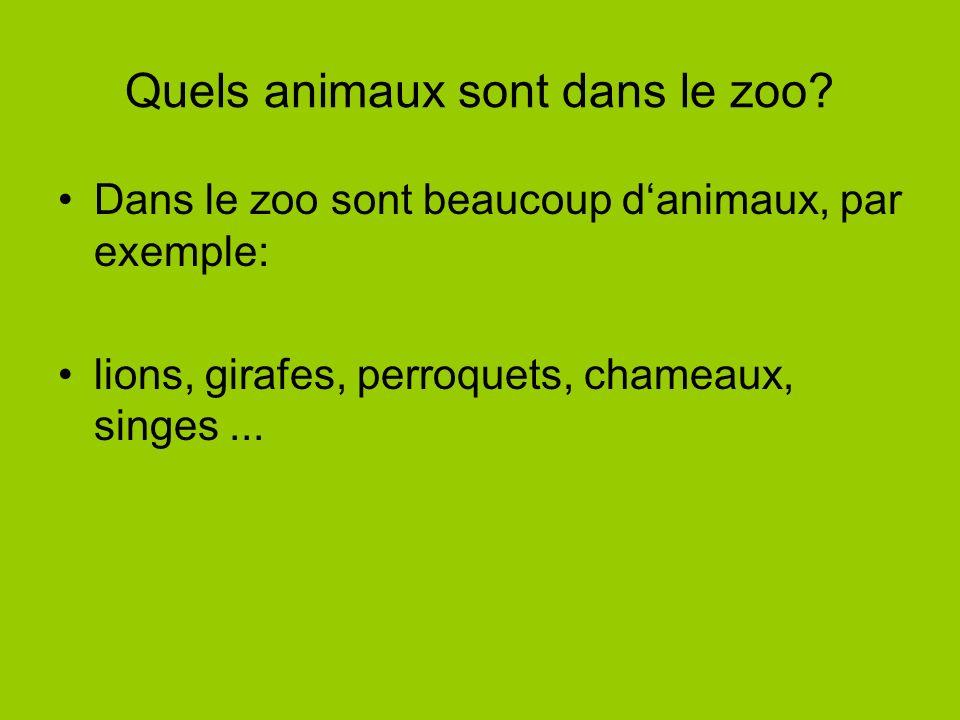Quels animaux sont dans le zoo