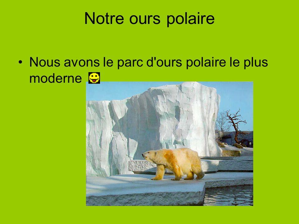 Notre ours polaire Nous avons le parc d ours polaire le plus moderne