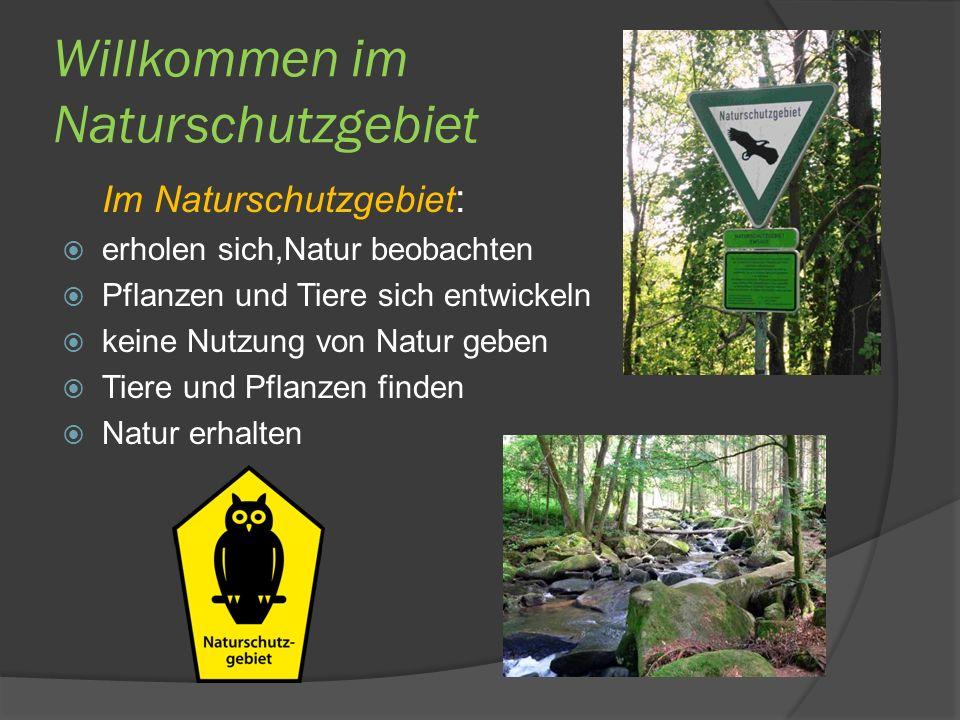 Willkommen im Naturschutzgebiet