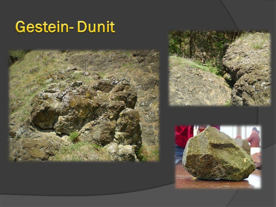 Gestein- Dunit