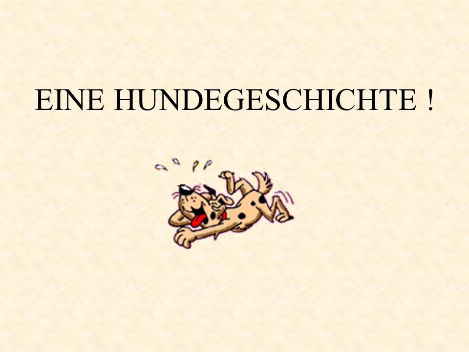 EINE HUNDEGESCHICHTE !