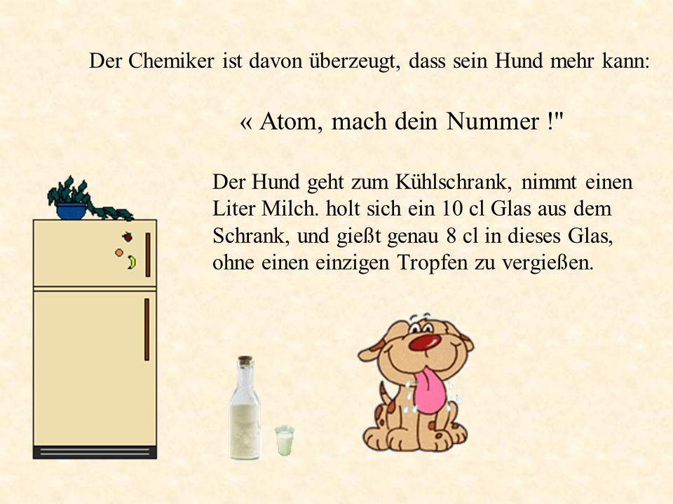 Der Chemiker ist davon überzeugt, dass sein Hund mehr kann: « Atom, mach dein Nummer ! Der Hund geht zum Kühlschrank, nimmt einen Liter Milch.