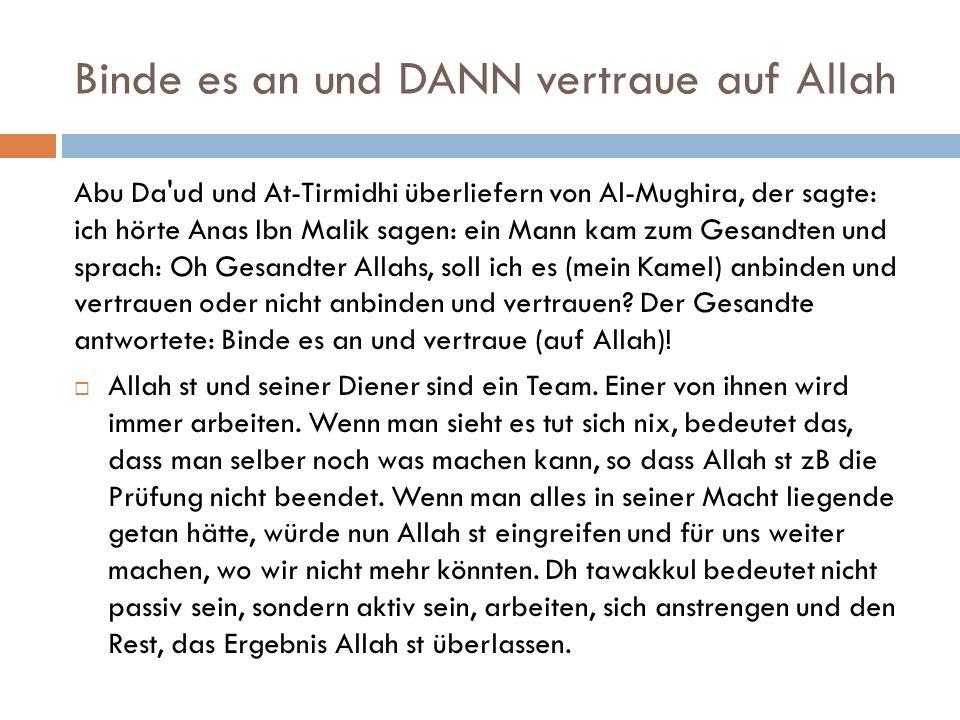 Binde es an und DANN vertraue auf Allah