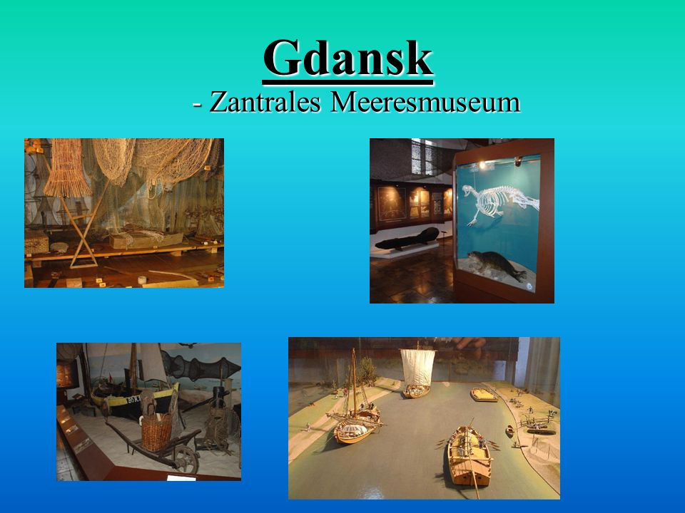 - Zantrales Meeresmuseum