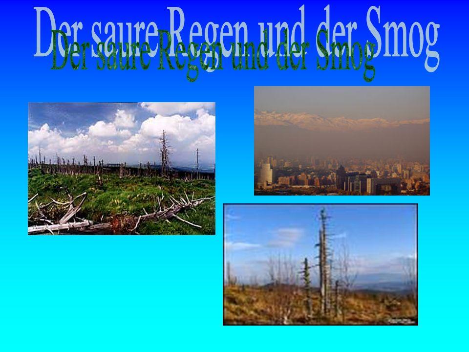 Der saure Regen und der Smog