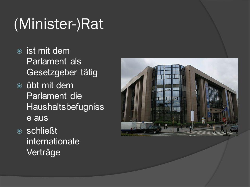 (Minister-)Rat ist mit dem Parlament als Gesetzgeber tätig