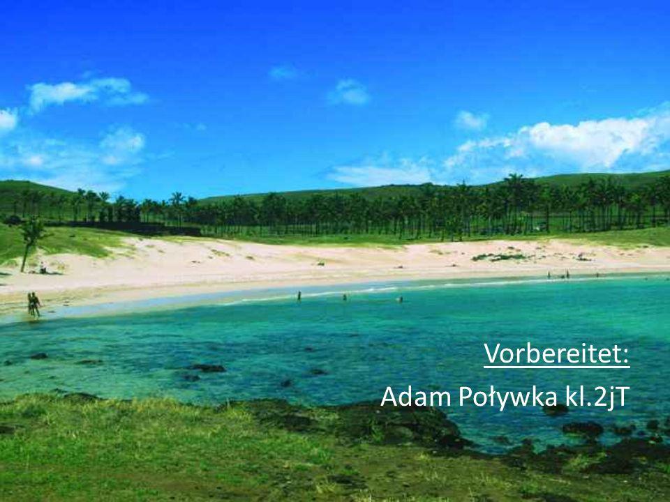 Vorbereitet: Adam Poływka kl.2jT
