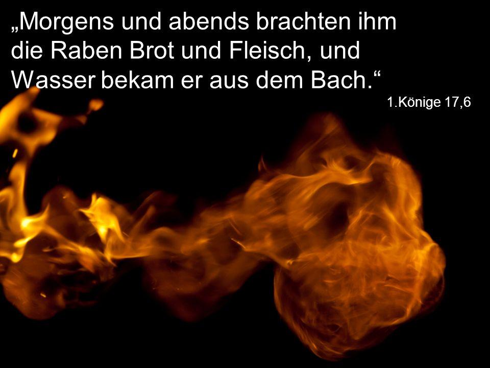 """""""Morgens und abends brachten ihm die Raben Brot und Fleisch, und Wasser bekam er aus dem Bach."""