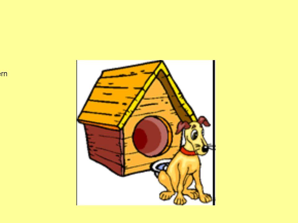 Der Hund ist vor dem Haus