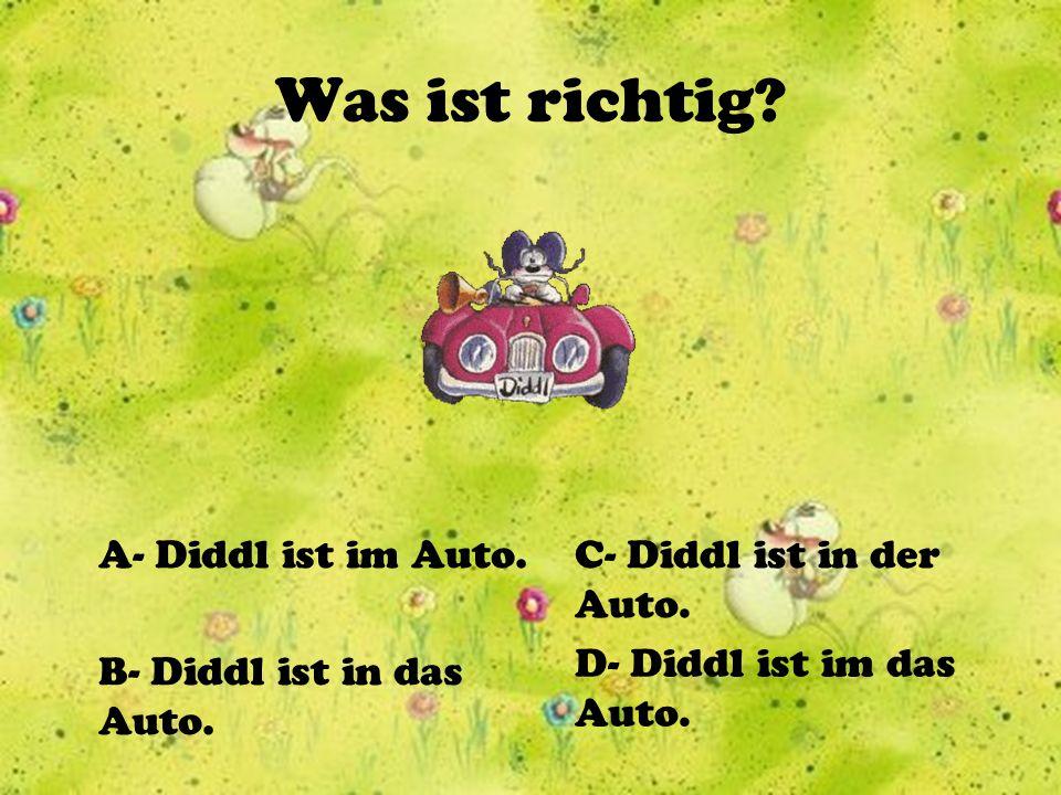 Was ist richtig A- Diddl ist im Auto. C- Diddl ist in der Auto.