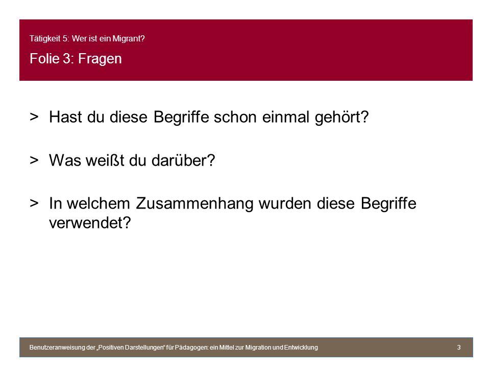 Tätigkeit 5: Wer ist ein Migrant Folie 3: Fragen