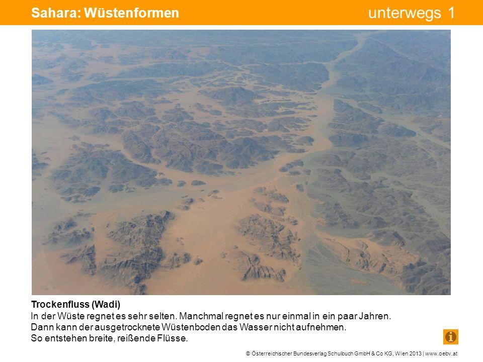 Sahara: Wüstenformen Bohrturm Pumpe Pumpe Trockenfluss (Wadi)