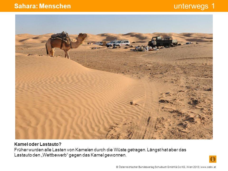 Sahara: Menschen Bohrturm Pumpe Pumpe Kamel oder Lastauto