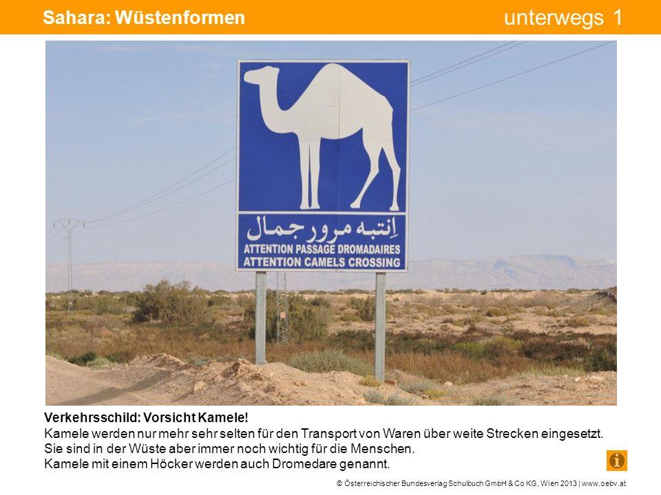 Sahara: Wüstenformen Verkehrsschild: Vorsicht Kamele!