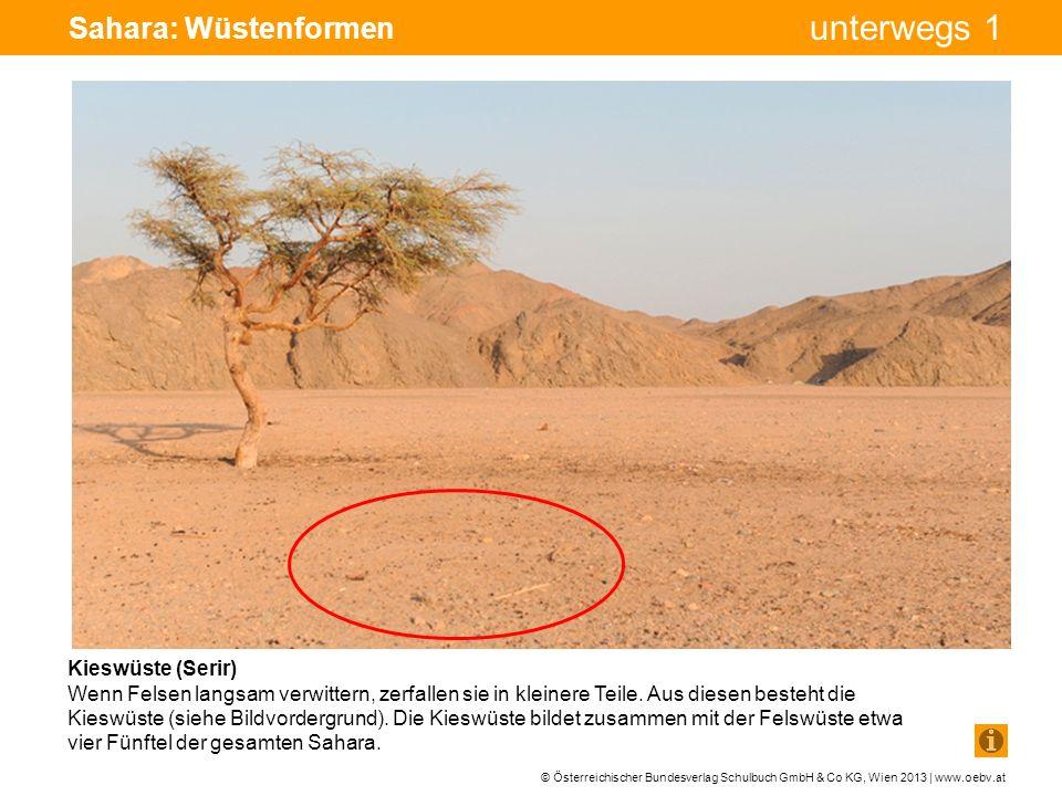 Sahara: Wüstenformen Kieswüste (Serir)