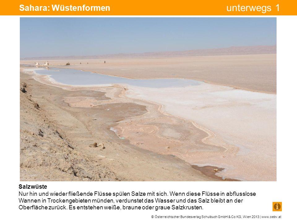 Sahara: Wüstenformen Bohrturm Pumpe Pumpe Salzwüste