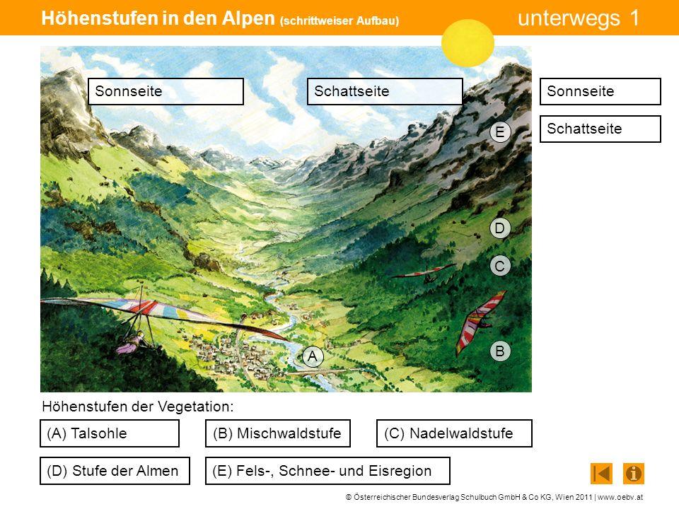 Höhenstufen in den Alpen (schrittweiser Aufbau)